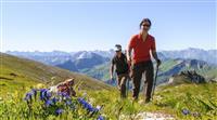 SANTÉ : Des médecins écossais prescrivent la nature à leurs patients
